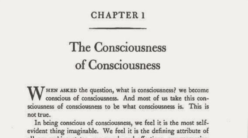 The Consciousness of Consciousness