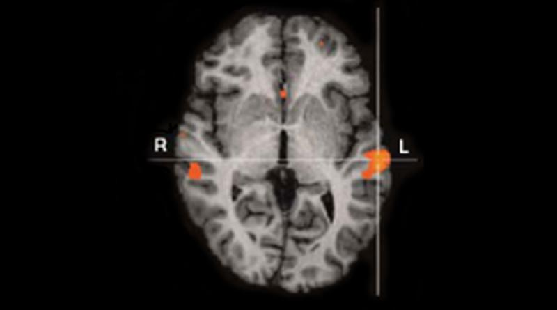 Neuroscience Confirms Julian Jaynes's Neurological Model