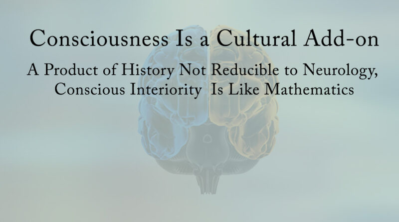 Consciousness Is A Cultural Add-on