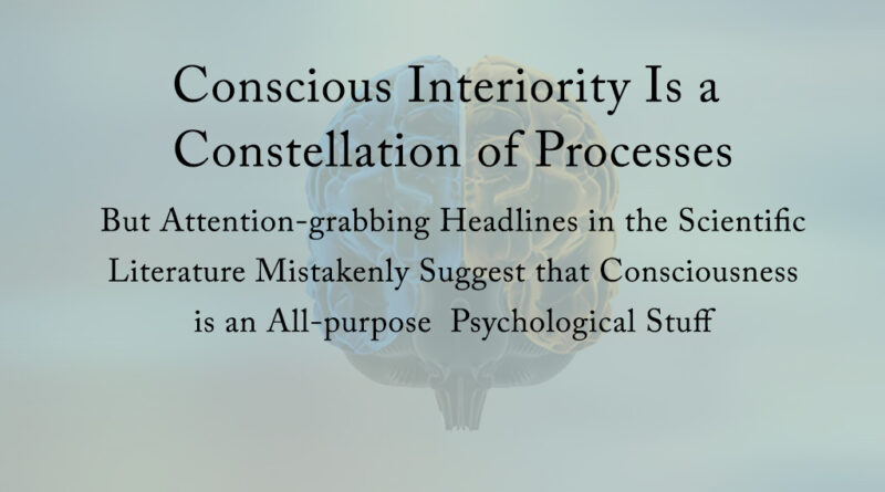 Conscious Interiority is a constellation of processes