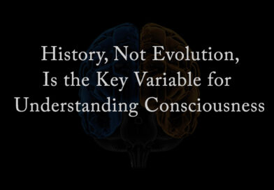 History, Not Evolution, Is the Key Variable for Understanding Consciousness